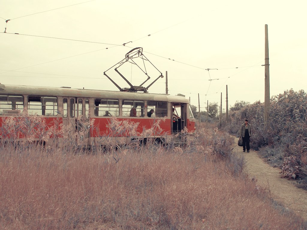 Камышовый трамвай