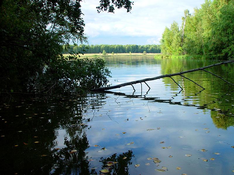 Россия реки/озера   ландшафты Верхнерузское водохранилище