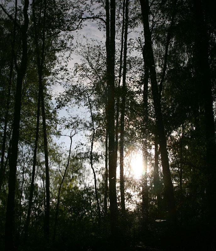 Мокрое солнце