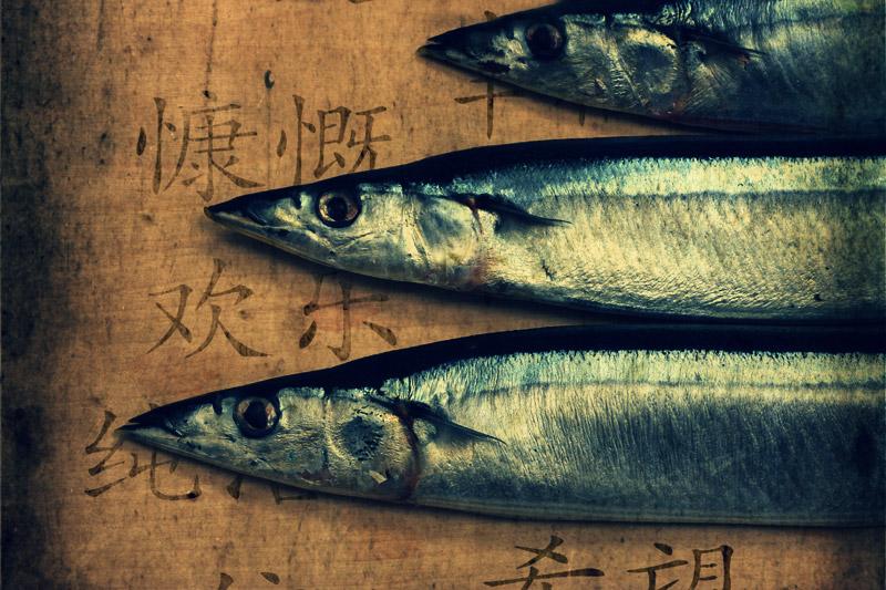 Рыбий глаз или Китайские мотивы