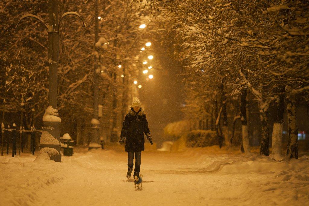 Прогулка в снегопад