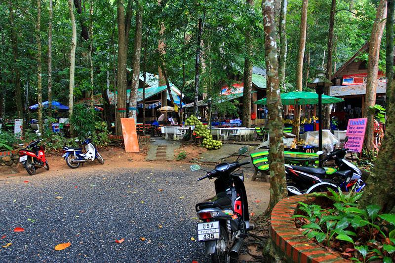 В джунглях у водопада Намуанг, Ко Самуи, Таиланд