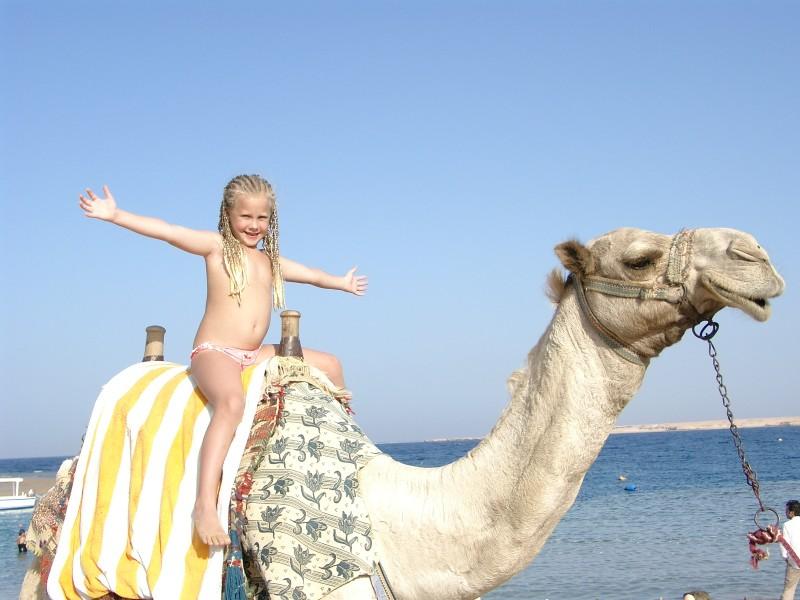 Даша и Оскар.Египет.Шермаль-Нага.