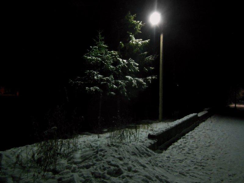 """Снежок (из цикла """"Одиночество света"""")"""