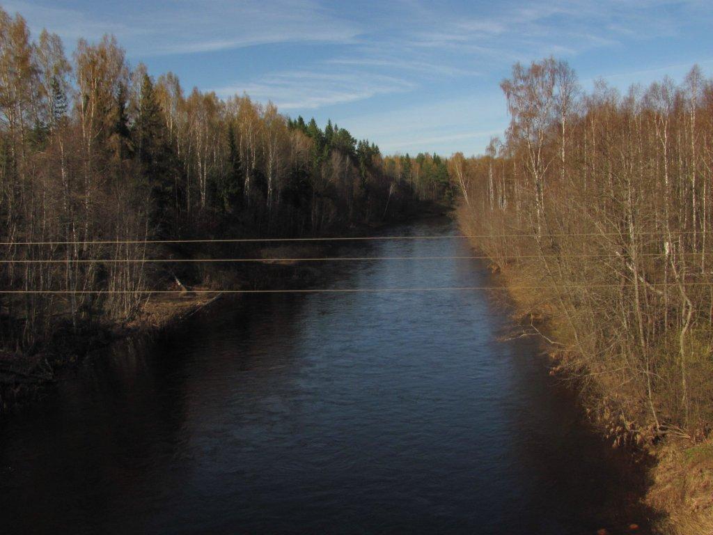 Река Большая Коша