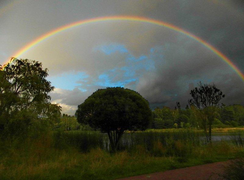 Сегодняшняя радуга