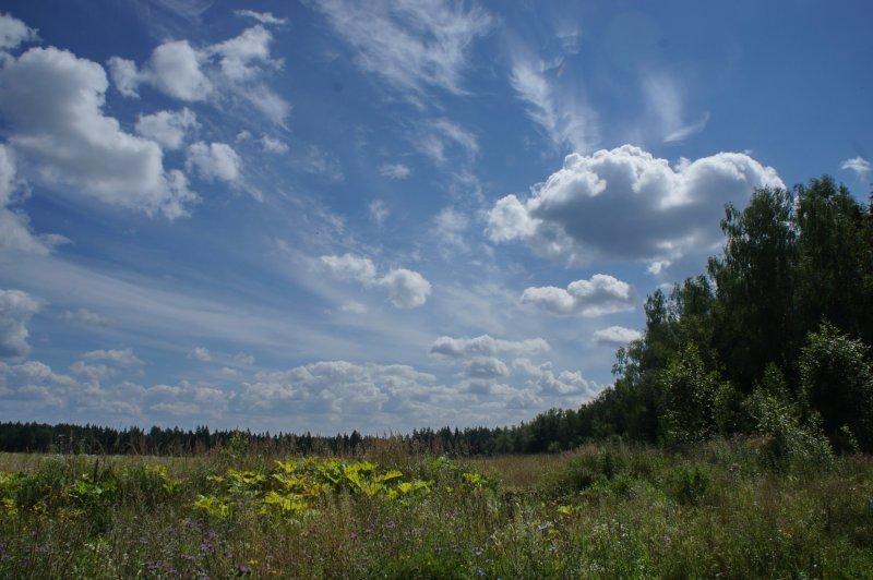 Дневной пейзаж