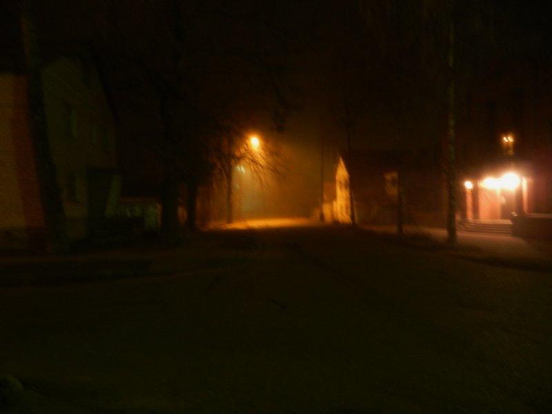 """Ночной туман (из цикла """"Одиночество света"""")"""