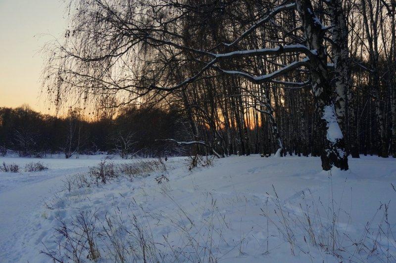 Зимний нехолодный вечер