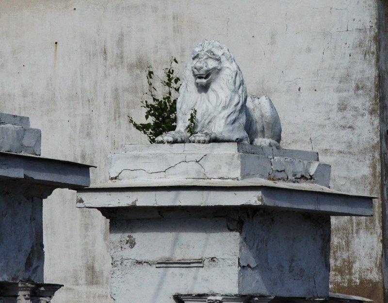 Больного Льва лягает и Осел!