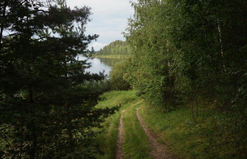 Дорога, что ведет меня к реке
