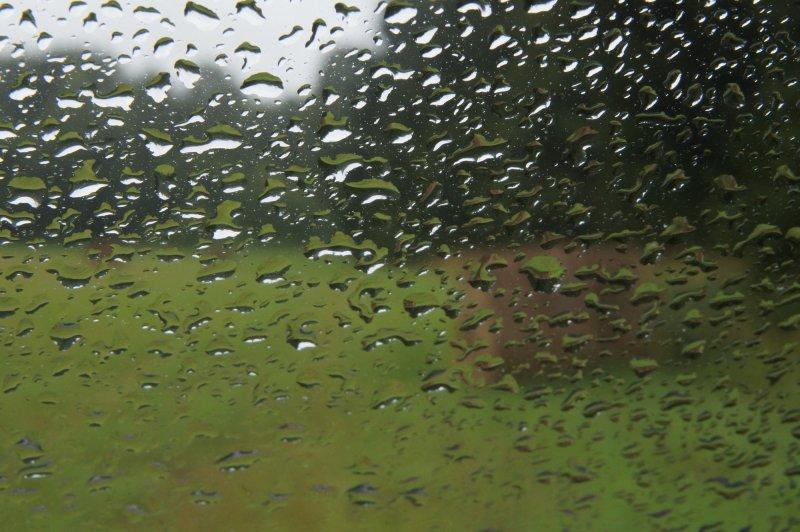 Дождливый день в деревне