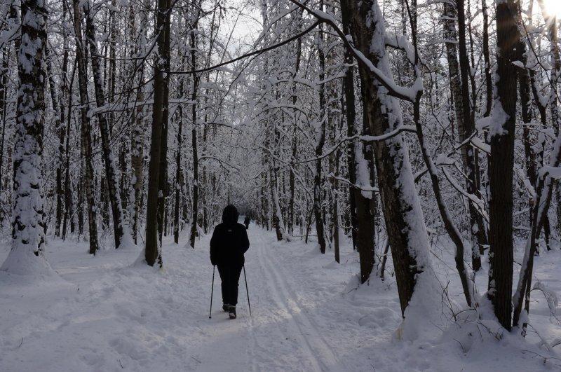 Годик деньги подкоплю - лыжи я себе куплю