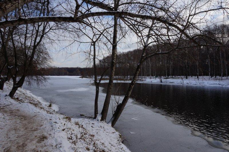 Пасмурный зимний пейзаж