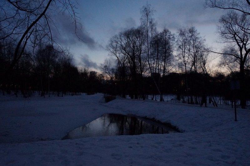 Вечерний пруд