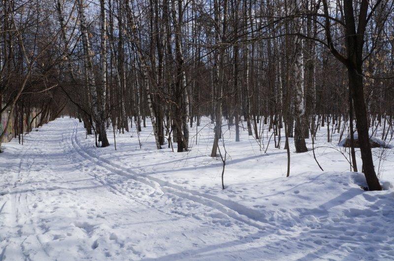 Последний зимний снег