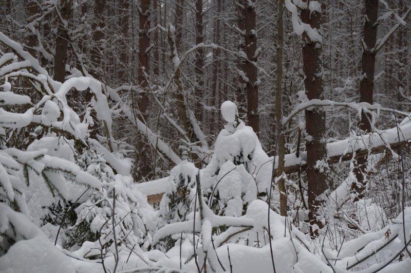 Снежная статуя
