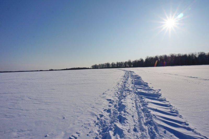 Белое солнце снежной пустыни