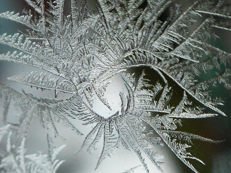 http://www.fotoplex.ru/photos/freshta75/Winter/i-189087.jpg