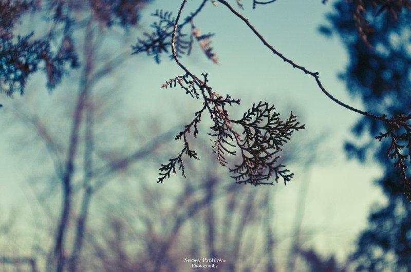 Sounds Of Winter (Original Edit)