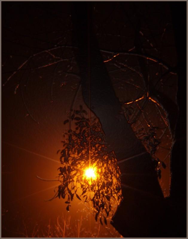 Оранжевый туман