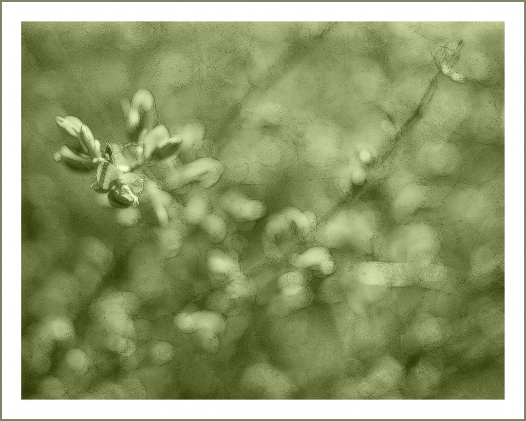 Весеннее...