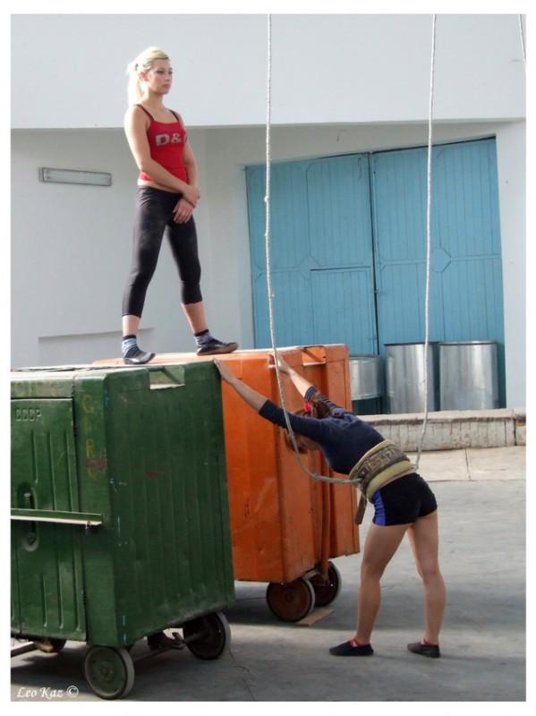 Circus №9656