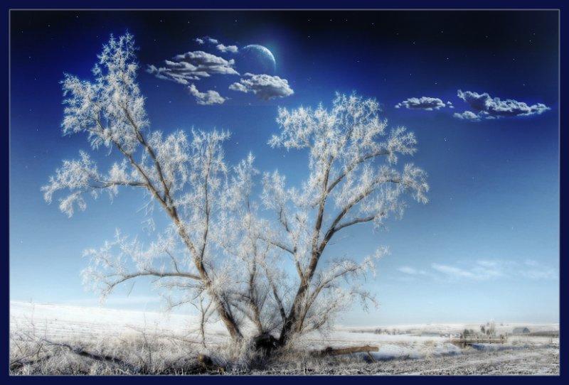 ... зимний пейзаж ...