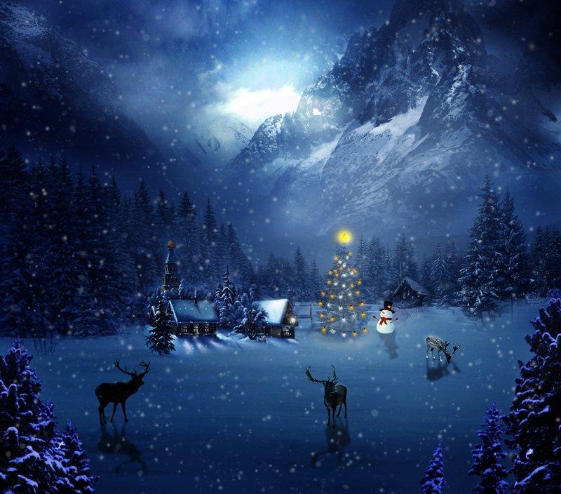 ... рождественская ночь ...