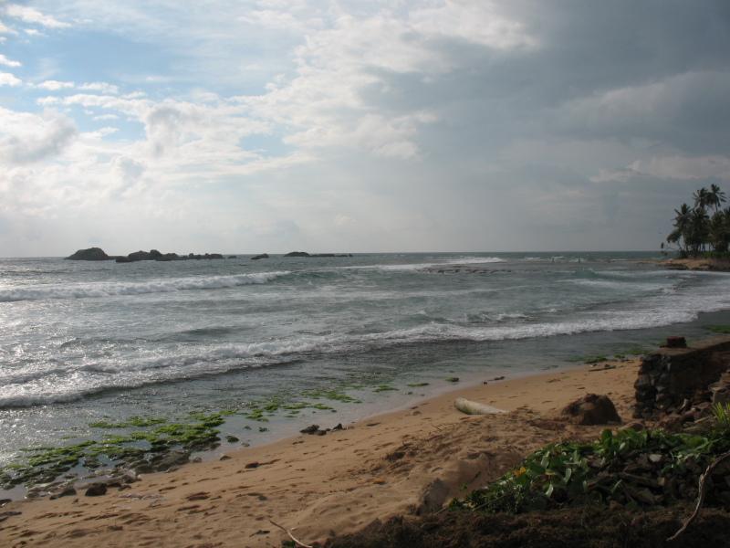 Отдых на Шри Ланке