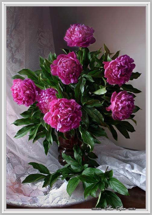 Самый лучший подарок ,это цветок.  Ранние весенние цветы,пионы,лилии,тюльпаны,ландыши,тагетесы,ромашки...