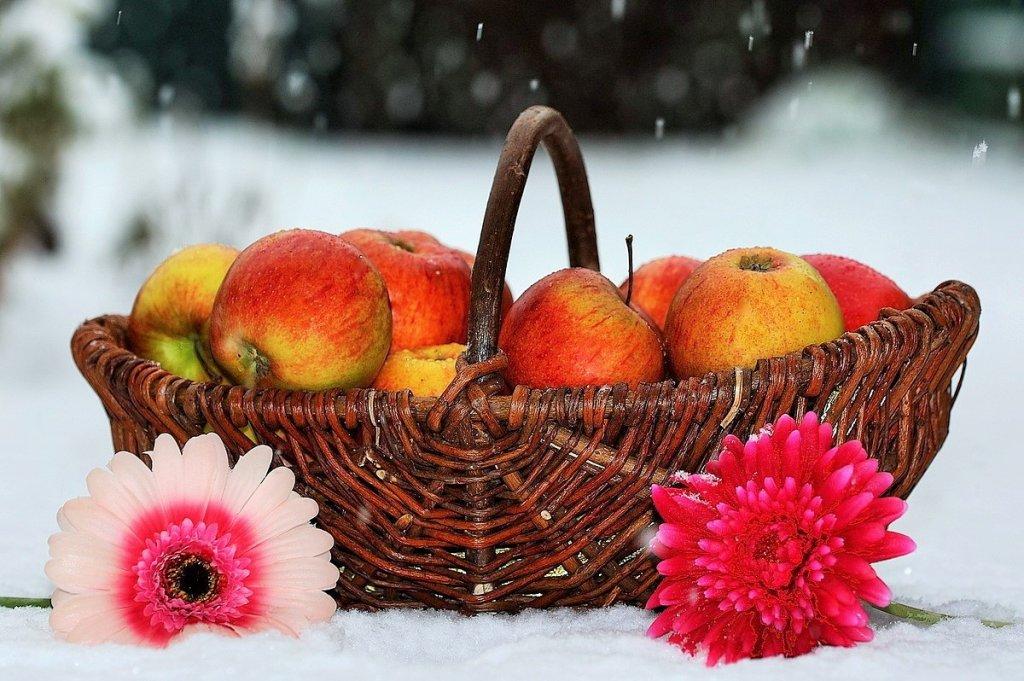 яблоки на снегу )