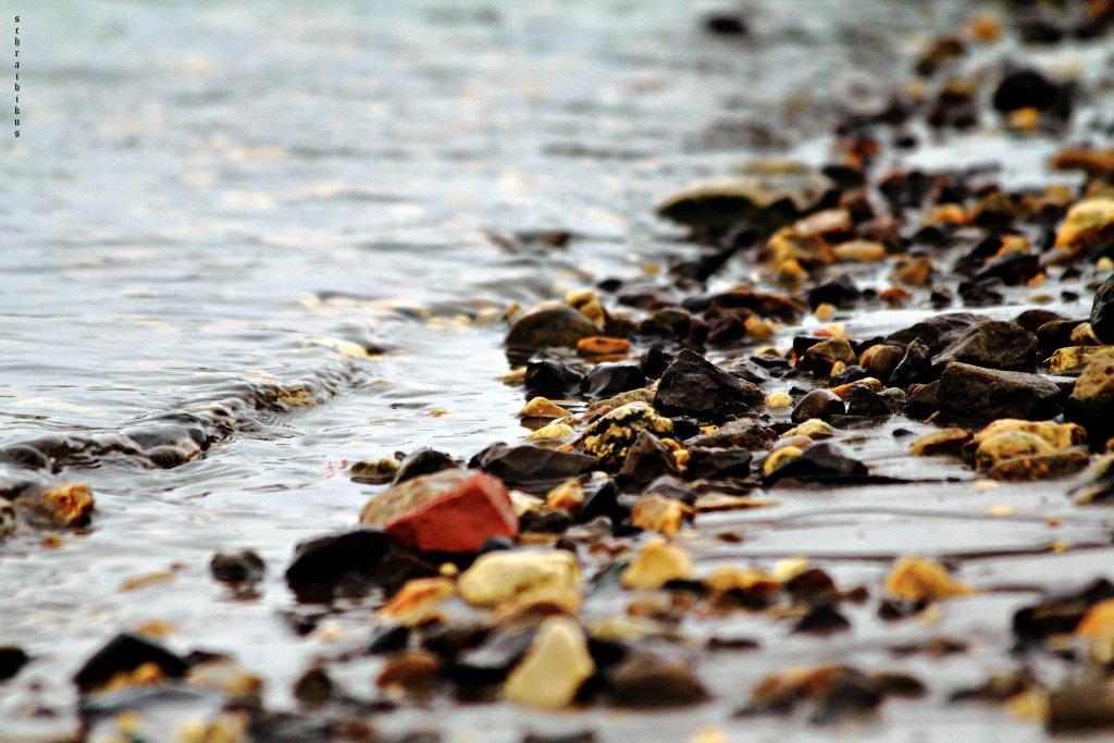 янтарный берег
