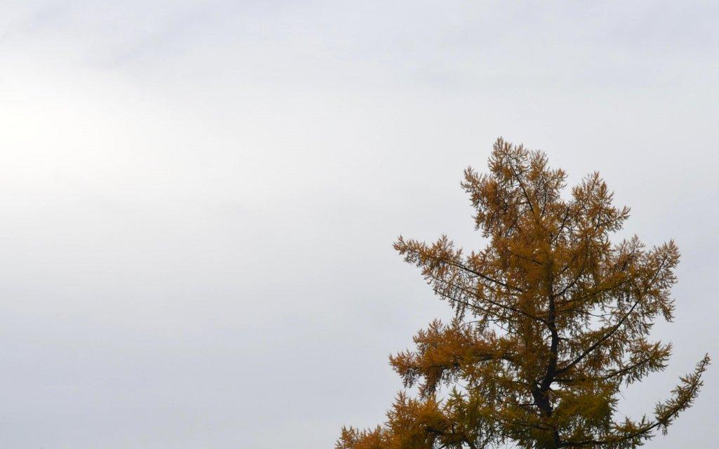 Небо Звенигорода