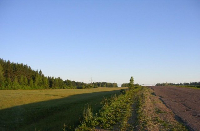 Фото форумчанина Виктора. Уржум, дорога в Лебедевск.