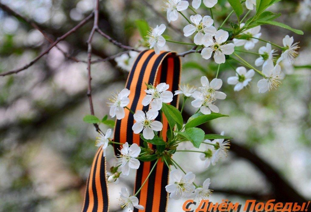 опять весна на белом свете...