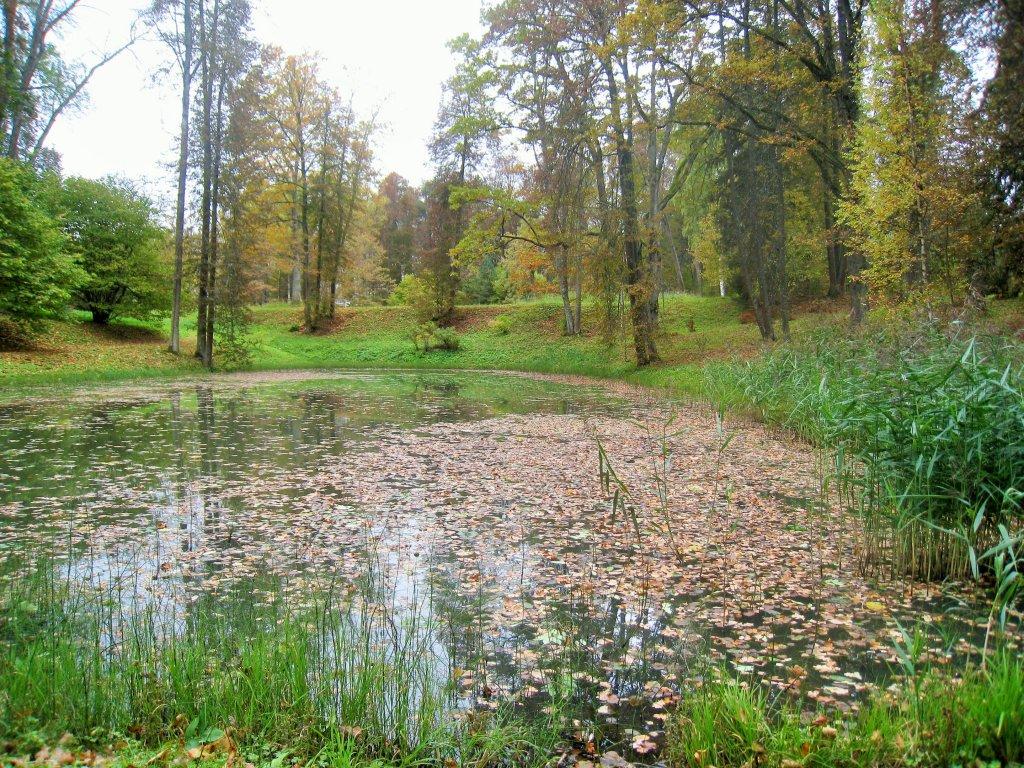 Тригорское, парк