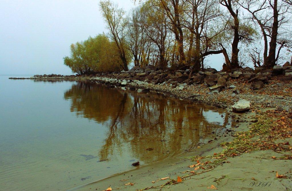 Утренний туман на реке,
