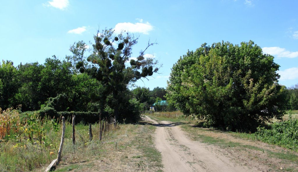 Азбука дорог.